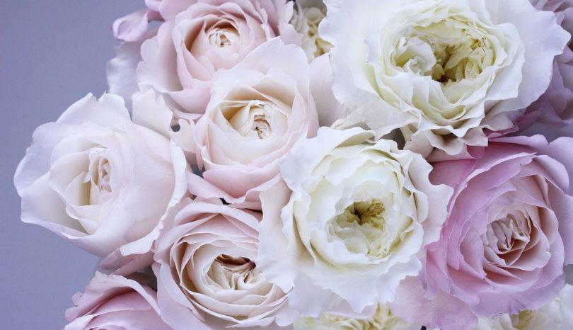 Gör någon glad med blommor