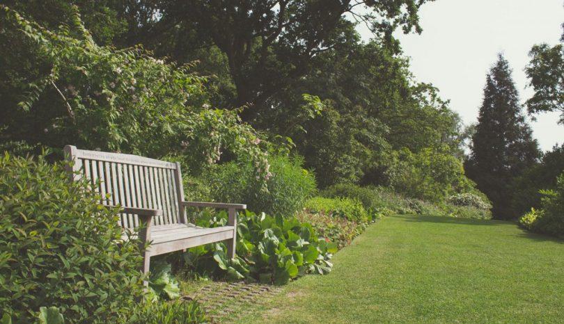 Trädgårdshjälp med kompetens